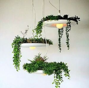Hanging plant pendant chandelier Shabby Chic Country Farmhouse Hampton Bayside Area Preview