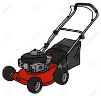 Grass cutting, landscaping & more!