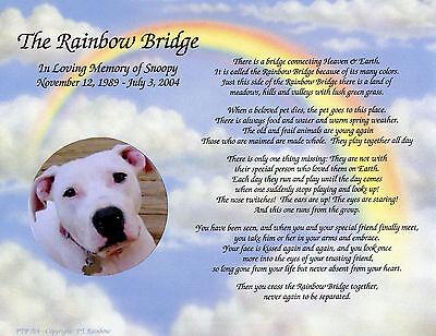Personalized Pet Memorial Poem The Rainbow Bridge For Loss of Pet Rainbow Bridge Poem Pet Loss