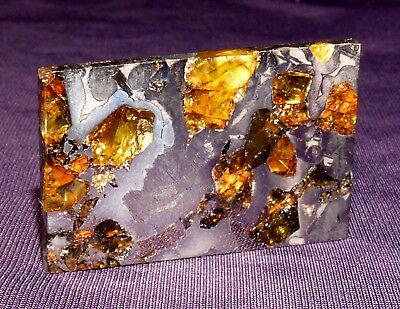 Meteorit Pallasit Seymchan geätzt Olivine teils transluscent 33x21x2,4mm 11g 陨石