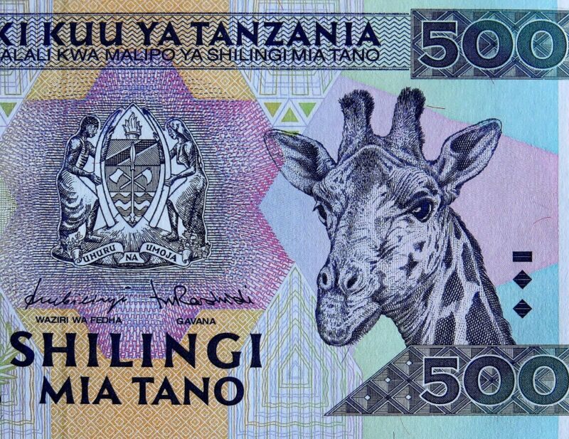 Giraffe on Money Africa 1997 Tanzania 500 Shillingi Banknote Uncirculated