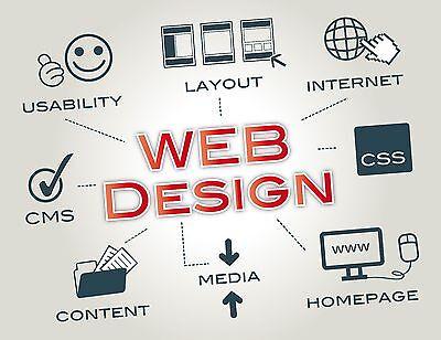 Professional Website Design With Free Logo Wordpress