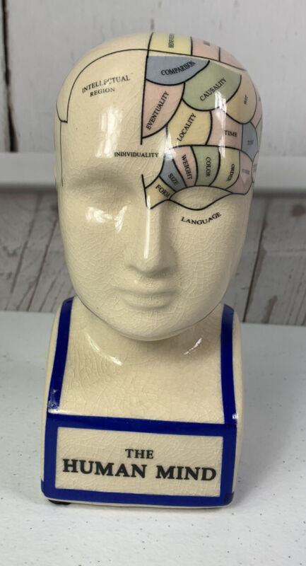 """Phrenology Head """"The Human Mind"""" Ceramic Bust Statue Psychology ~ In Color"""