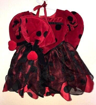 2 pc BABY GIRLS size 12 month VELVET LADYBUG HALLOWEEN COSTUME HAT POLKA DOTS CU](2 Month Halloween Costume)