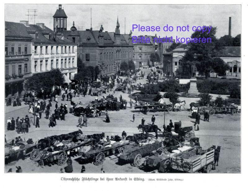 East Prussian refugees in Elblag 1914 photo image Elbing WW1 war +