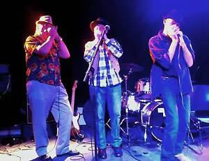 Harmonica Tuition: group & private Hindmarsh Charles Sturt Area Preview