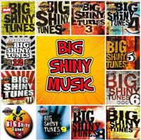 "Tribute to ""Big Shiny Tunes Seeks Drums, Bass, Keys"