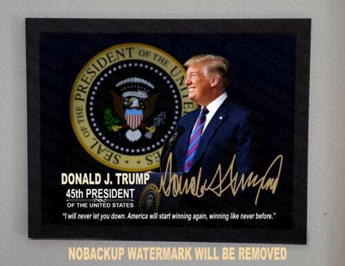 President Donald Trump Presidential Seal Autograph 8.5x11 Photo Framed portrait