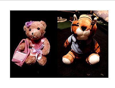 Stuffed Animal Gift Card Holder Tiger or Bear Birthday Baby