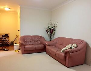 Strathfield - Single bed + garage for rent Strathfield Strathfield Area Preview