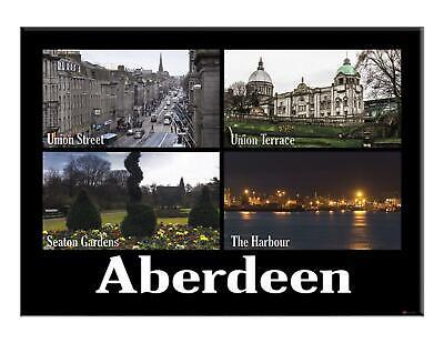 Aberdeen City Fridge Magnet Metallic