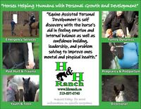 Equine Assisted Personal Growth & Development Programs