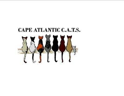 Cape-Atlantic Citizens Altering The Strays
