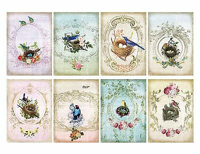 8 Shabby Chic Birds Nest ATC Cards Hang Tags - Scrapbooking, Paper Crafts - Shabby Chic Scrapbook Paper