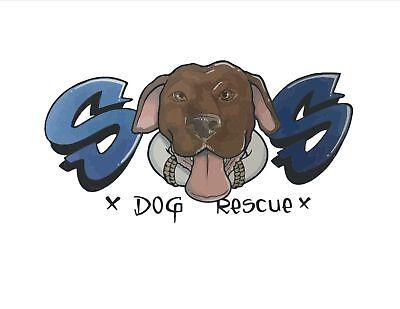 Strength of Shadow Dog Rescue, Inc.