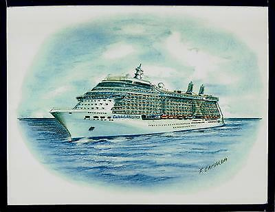Original Art Work  Celebrity Solstice  Celebrity Cruises   Cruise Ship