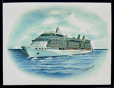 Original Art Work  Celebrity Solstice  Celebrity Cruises   Cruise Ship