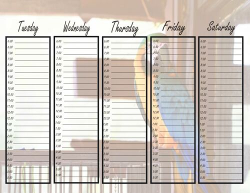 Printable Appointment Book