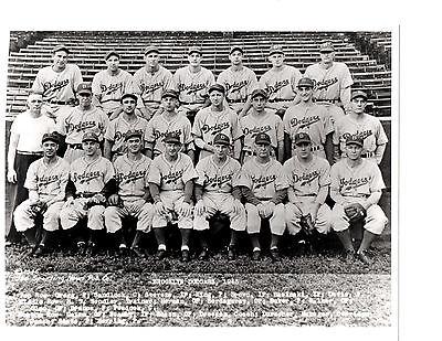 (1945 BROOKLYN DODGERS TEAM 8X10 PHOTO  BASEBALL NEW YORK )
