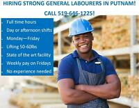 General Labourers needed for Putnam- call us!!