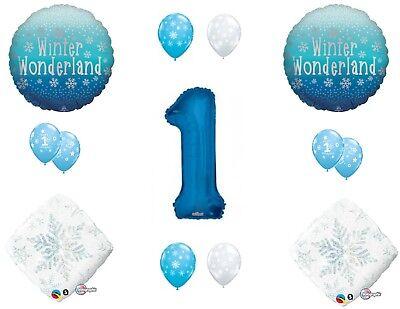 NEW! Winter Wonderland 1st First Birthday Party Balloons Decoration Supplies](First Birthday Winter Wonderland)