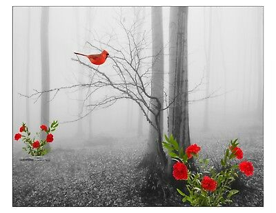 Red Gray Trees Cardinal Bird Flowers Home Decor Art Photo Print Bedroom Picture