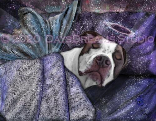 American Bulldog Pitbull AmStaff Memorial Sympathy Angel Pet Portrait Art Print