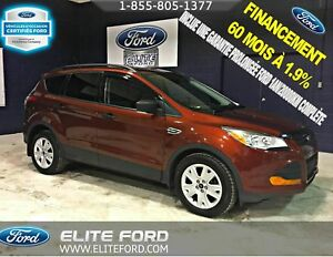 Ford Escape - 2014