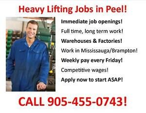 Warehouse Worker   General Labour   Mississauga / Peel