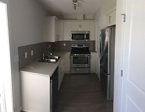One bedroom one bath lower suite  BRAND NEW
