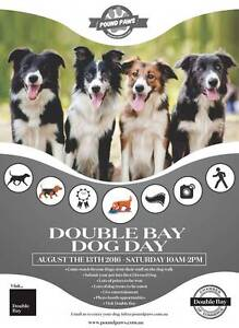 Double Bay Dog Day Double Bay Eastern Suburbs Preview