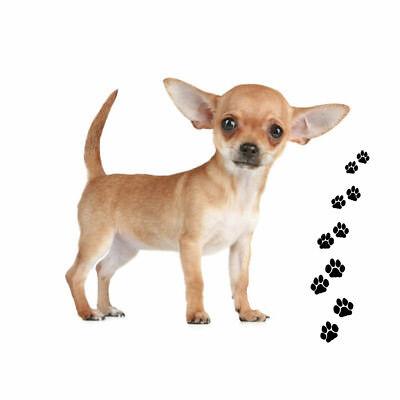 Andreas Round Silicone Mat Jar Opener, Chihuahua  Dog, 6.25