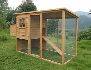 2016 Poultry Chicken Cat Rabbbit House Coop CC048 6 hens approx 8ft