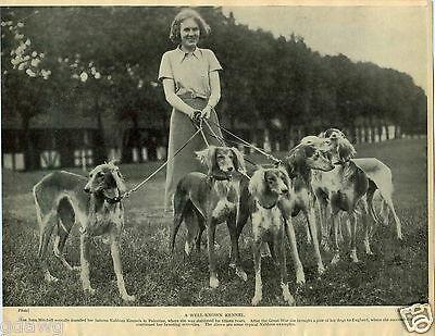 1930 Book Plate Dog Print Saluki Nablous Kennel Sarona Genie Gulab Lance