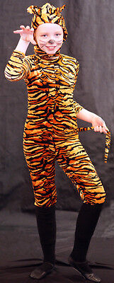 Alice Im Wunderland Cheshire Katze/Tiger Kostüm Jedes Alter / (Land Katze Kostüm)