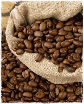 Pianta del CAFFE' 'Coffea Arabica' in vaso h. 20 cm circa