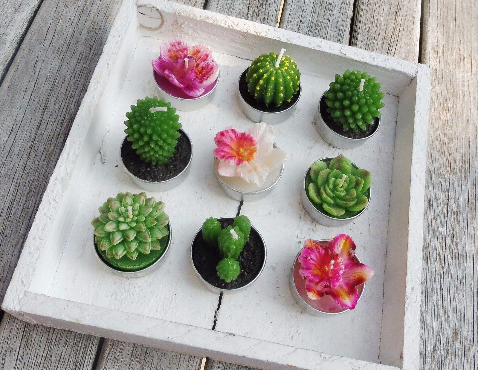 Teelicht Kerze Kaktus, Lotus, Aloe Vera, Orchidee, Malve Deko