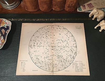 Original 1880 Antique Celestial Night Sky STAR MAP Astronomy Constellation Atlas