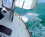 Discover Sailing as cruising or race crew Toronto Lake Macquarie Area Preview