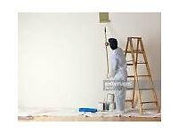 EXPERT Painter - internal or external work
