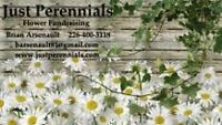 Fundraise with Just Perennial Plants