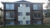 For Rent 2 Bedroom apartment in Camrose Adult only