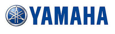 Yamaha-Breakers