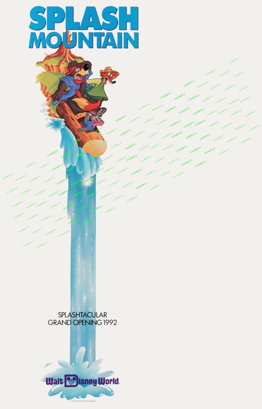 "Disney - Splash Mountain  (11"" x 17"") Collector's Poster Print"