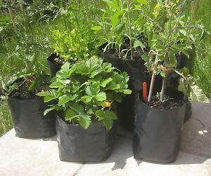 5x 30 Liter Pflanzsack Kartoffeln Tomate Paprika Rosenkohl Möhre Pflanztopf