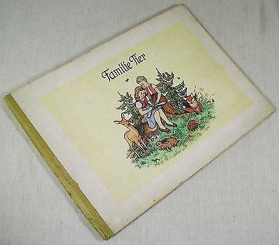 Familie Tier -  Bilderbuch - Bilder von Thea Siegel - ca. um 1950 /v1