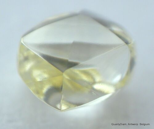 NATURAL DIAMOND RARE FANCY YELLOW GENUINE REAL DIAMOND GEMSTONE OUT DIAMOND MINE