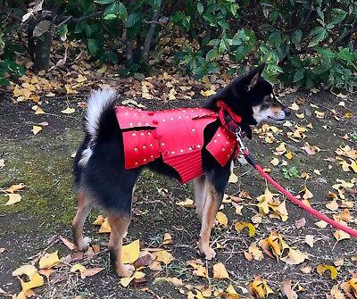 Lucky Dog Red Samurai Armor For Small Dogs, Dog Costume, Clothing, Dog-Armor-901