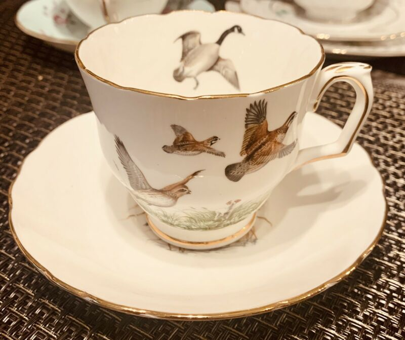 Royal Crown  Staffordshire Tea Cup and Saucer Bone China w Birds
