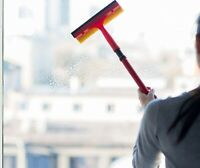 Professional Window Cleaning and Janitorial Service